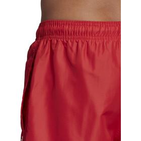 adidas Solid CLX SH SL Shorts Herrer, glory red